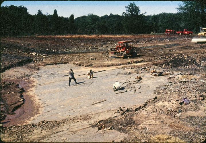 Excavation when the tracks were discovered